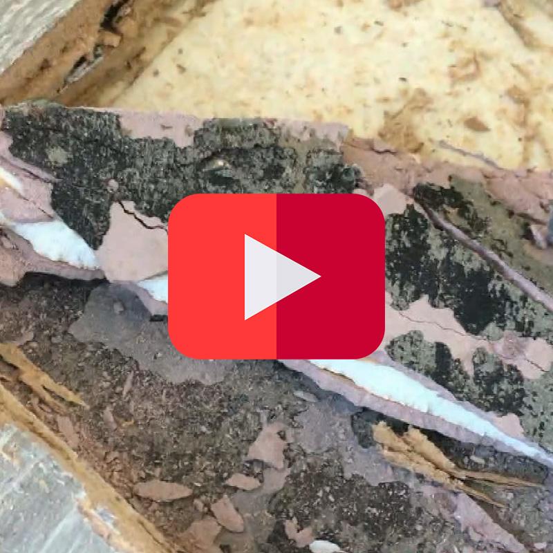 Ragréage et colle bitumineuse | Vidéothèque amiante